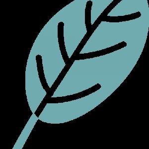 Leaf-logo-teal